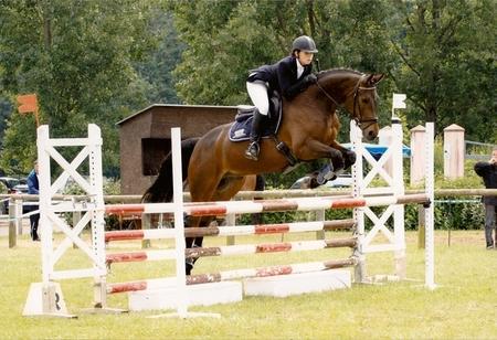 Centre questre du centaure equitation classique - Frison saut d obstacle ...